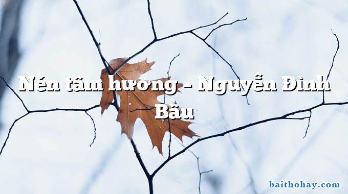 Nén tâm hương – Nguyễn Đình Bầu