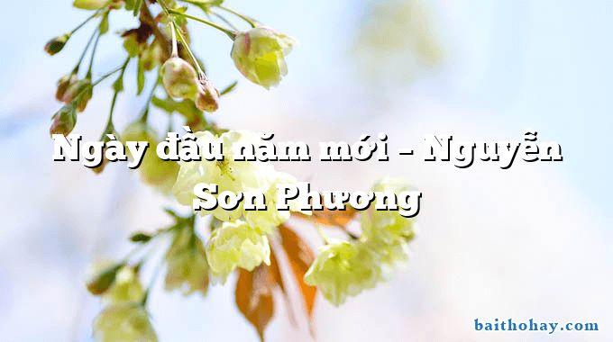 Ngày đầu năm mới – Nguyễn Sơn Phương