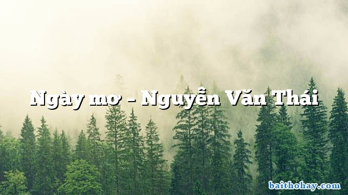 Ngày mơ – Nguyễn Văn Thái