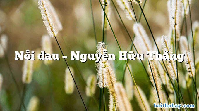 Nỗi đau – Nguyễn Hữu Thăng
