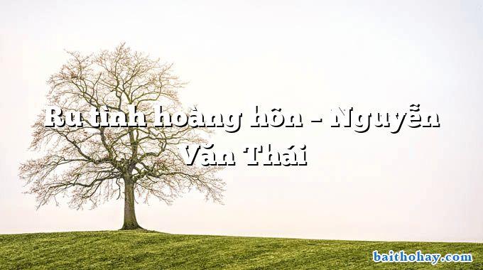 Ru tình hoàng hôn – Nguyễn Văn Thái