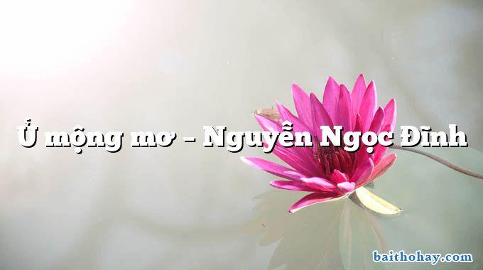 Ủ mộng mơ – Nguyễn Ngọc Đĩnh