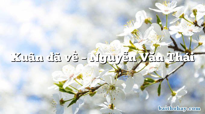 Xuân đã về – Nguyễn Văn Thái