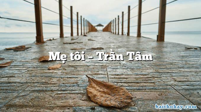 me toi tran tam - Đất nước tôi - Nguyễn Đình Huâ