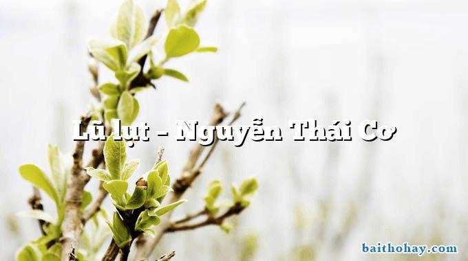 Lũ lụt – Nguyễn Thái Cơ