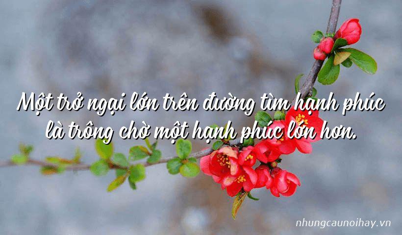 tong hop nhung cau noi hay ve su hanh phuc trong cuoc song noi tieng nhat 10 - Tổng hợp những câu nói hay về sự hạnh phúc trong cuộc sống nổi tiếng nhất