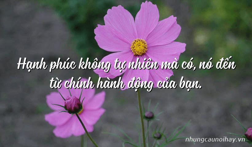 tong hop nhung cau noi hay ve su hanh phuc trong cuoc song noi tieng nhat 15 - Tổng hợp những câu nói hay về sự hạnh phúc trong cuộc sống nổi tiếng nhất