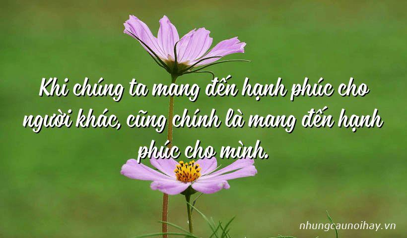 tong hop nhung cau noi hay ve su hanh phuc trong cuoc song noi tieng nhat 3 - Tổng hợp những câu nói hay về sự hạnh phúc trong cuộc sống nổi tiếng nhất