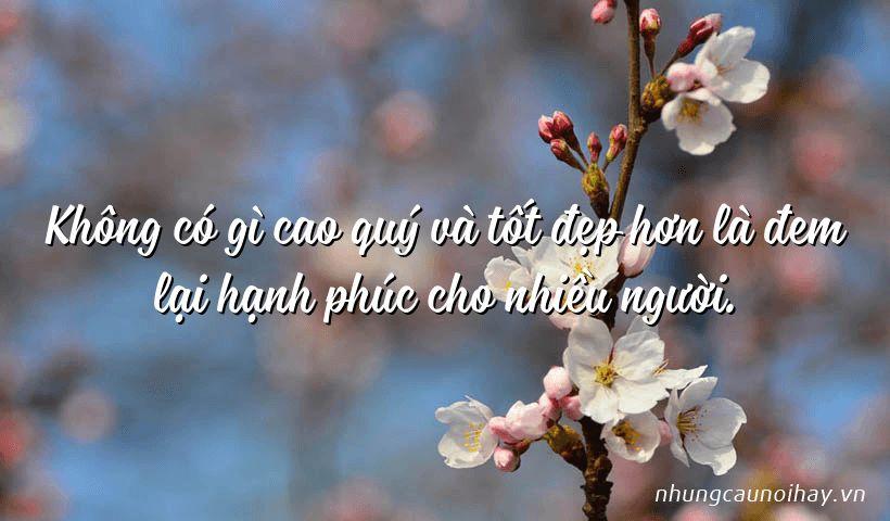 tong hop nhung cau noi hay ve su hanh phuc trong cuoc song noi tieng nhat 5 - Tổng hợp những câu nói hay về sự hạnh phúc trong cuộc sống nổi tiếng nhất