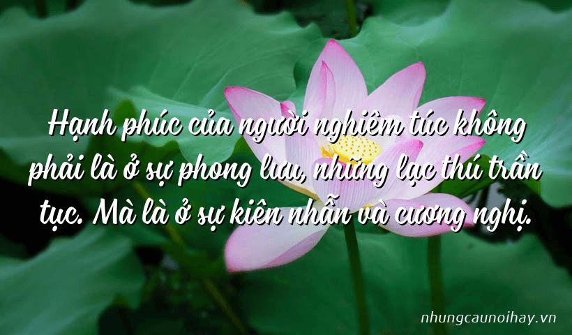 tong hop nhung cau noi hay ve su hanh phuc trong cuoc song noi tieng nhat 6 - Tổng hợp những câu nói hay về sự hạnh phúc trong cuộc sống nổi tiếng nhất
