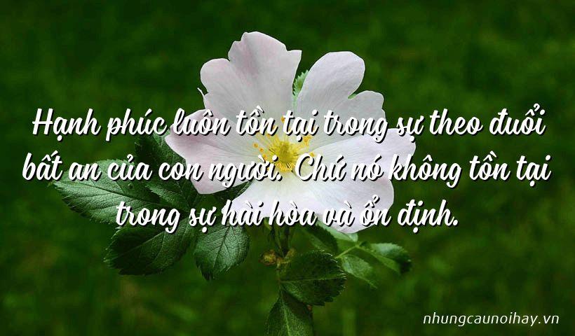 tong hop nhung cau noi hay ve su hanh phuc trong cuoc song noi tieng nhat 7 - Tổng hợp những câu nói hay về sự hạnh phúc trong cuộc sống nổi tiếng nhất